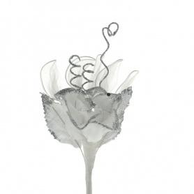 Fleur à  Dragée(F30)