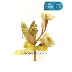 Fleur à Dragée(F3)