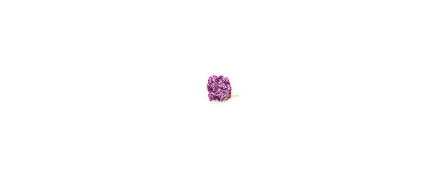 Mini Rose-décoration mariage